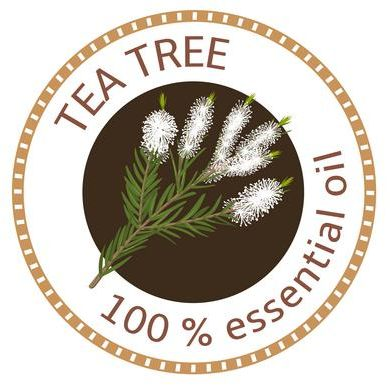 Tea Tree 100% pure essential oil
