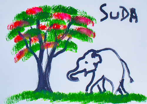 Paintings by elephants made by Suda the elephant at our elephant park and clinic in Chiang Mai, Thailand.