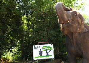 Elephant Painting By Suda - 4