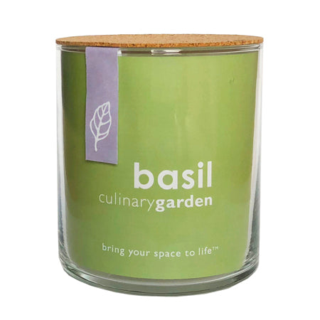 Potting Shed Creations - Essential Basil Culinary Garden