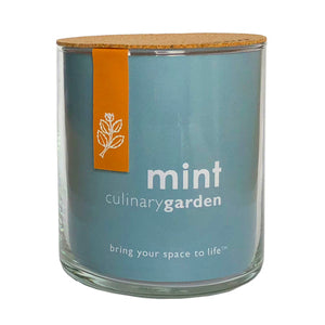 Potting Shed Creations - Essential Mint Culinary Garden