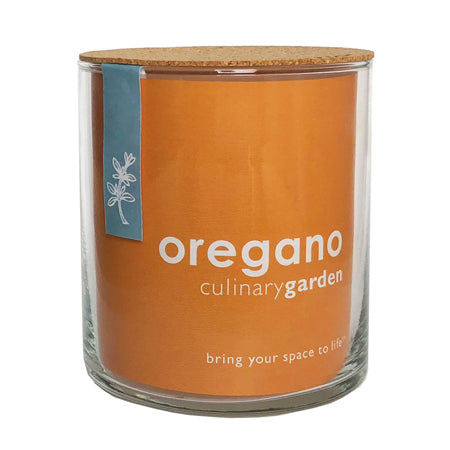 Potting Shed Creations - Essential Oregano Culinary Garden