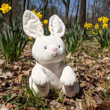 Load image into Gallery viewer, Animated Flora Bunny 12in from Gund