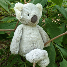 Load image into Gallery viewer, Bashful Koala from Jellycat