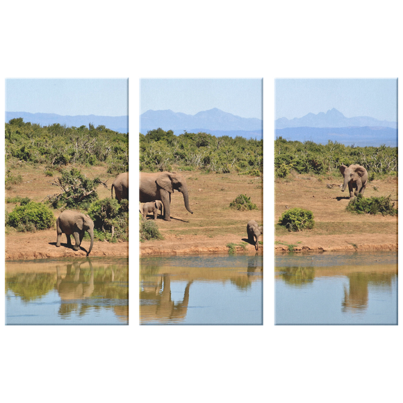 3 Set Canvas African Elephant Family Wall Art Safari Elephant Wall Art African Wildlife Canvas Living Room Wall Art Home and Office Decor