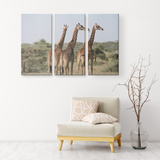 3 Set Canvas African Giraffe Wall Art African Safari Wildlife Animals Canvas Living Room Wall Art Home and Office Decor