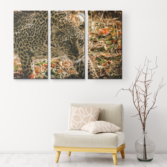 Set of 3 Canvas Cheetah Print Wall Art African Safari Wildlife Cheetah Canvas Living Room Wall Art Home and Office Decor