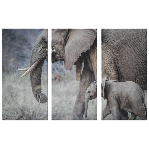 3 Set Canvas Elephant Artwork for Living Room African Elephant Safari Wall Art Canvas Home and Office Decor