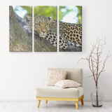 3 Set Canvas Cheetah Wall Art African Wildlife Safari Cheetah Canvas Print Living Room Wall Art Home and Office Decor