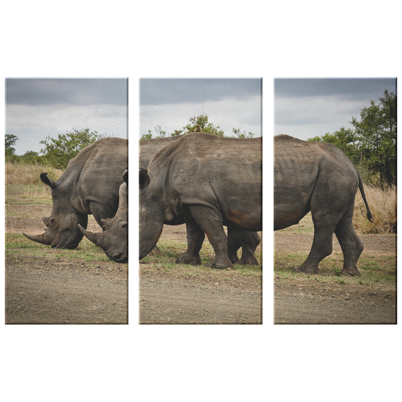3 Set Canvas Rhinoceros Wall Art African Rhino Wildlife Safari Wall Art Canvas Living Room Wall Art Home and Office Decor