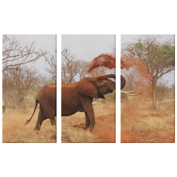 3 Set Canvas African Elephant Wall Art Safari Wildlife Elephant Canvas Print Living Room Wall Art Home and Office Decor