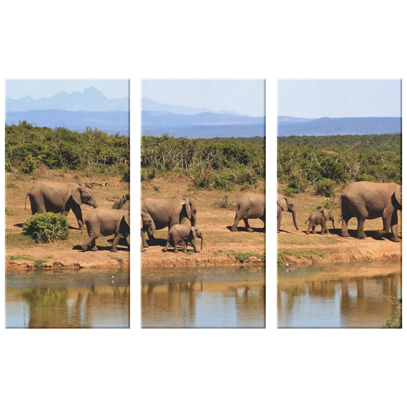 3 Set Canvas Elephant Safari Wall Art African Elephant Family Canvas Living Room Wall Art Home and Office Decor