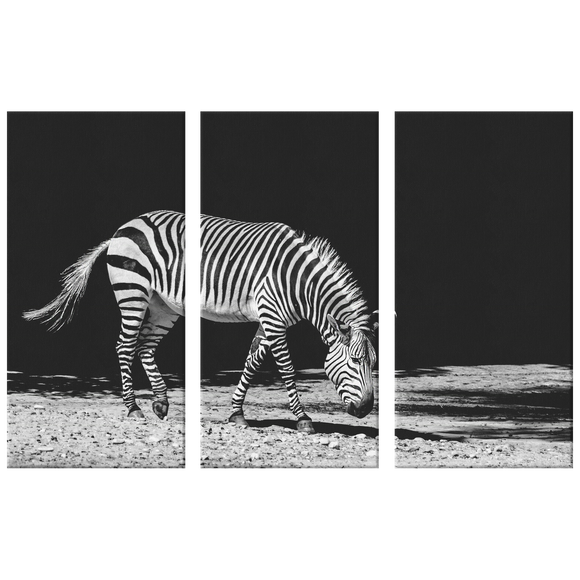 3 Set Canvas Zebra Print Wall Art Grayscale Zebra Canvas Living Room Wall Art Home and Office Decor