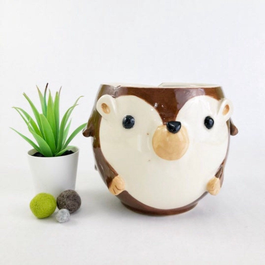 Hedgehog Planter/Bowl