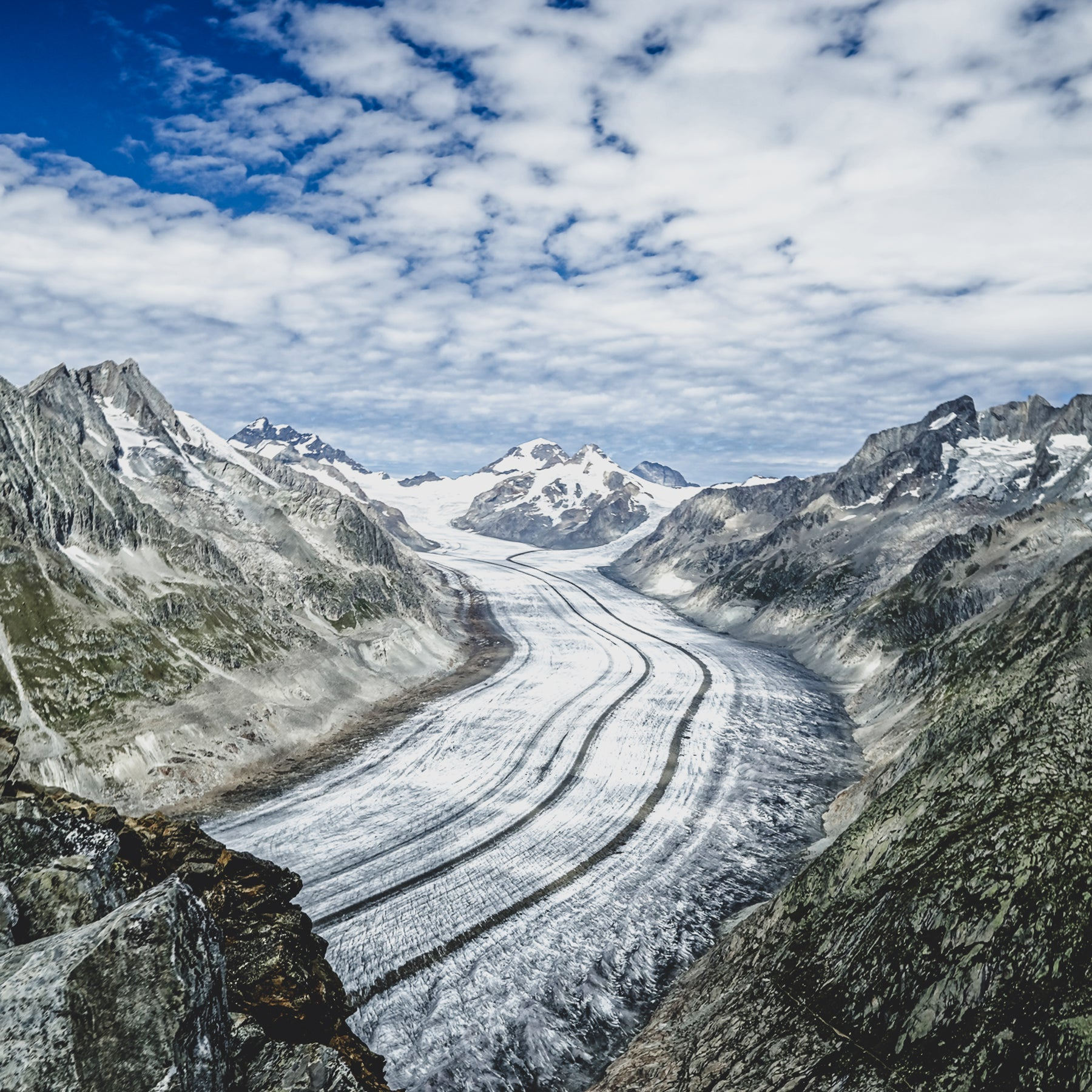 Save the Glaciers - ALETSCH