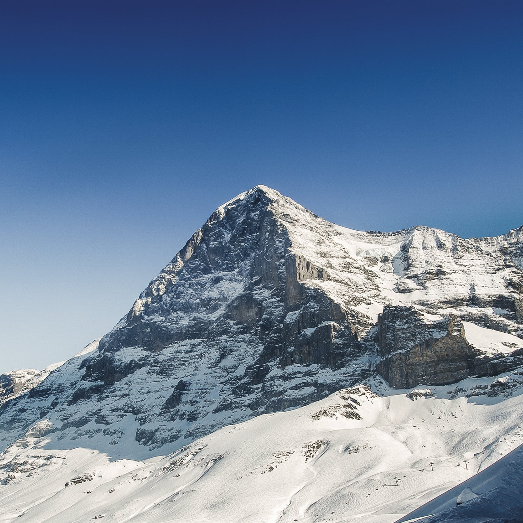 Save the Glaciers - EIGER