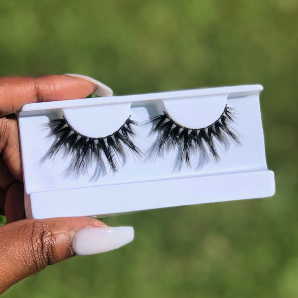"""Pop Quiz"" Lashes"