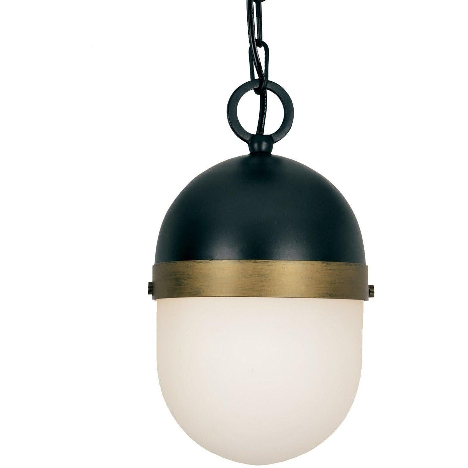 Crystorama - CAP-8505-MK-TG - One Light Outdoor Pendant - Capsule - Matte Black