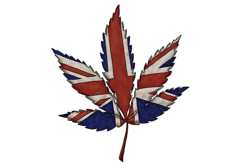 UK CBD market heading towards £1 Billion