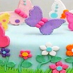 SCHOOL HOLIDAY PROGRAM - BUTTERFLY CAKE