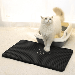 A beautiful white cat coming out from the litter box with his front paws and some litter on the litter mat.