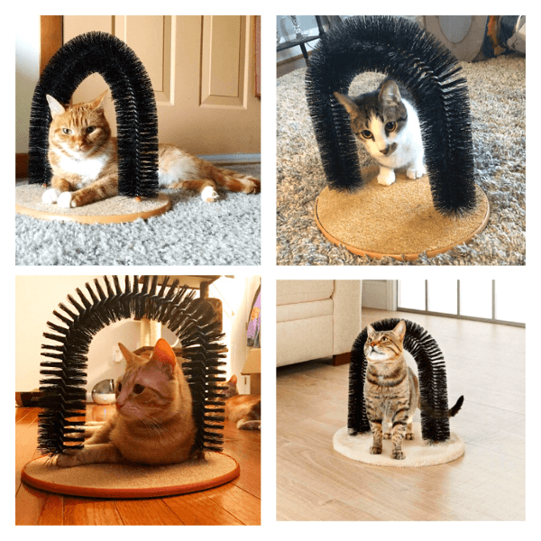 Cat self grooming tool arc-shaped in customers' photo