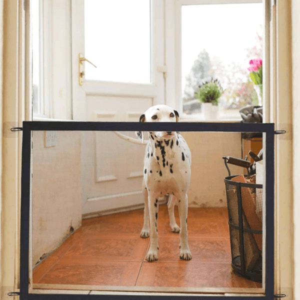 A Dalmatian dog in an hallway standing behind the indoor dog fence