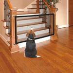 A beagle dog in front of the house stairs where the indoor is installed. The beagle watches the fence unable to climb the stairs.