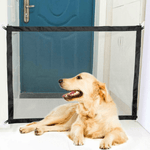 A Labrador dog in front of a blue door where the indoor fence is installed. The dog is unable to get close to the door due to the indoor fence installed.