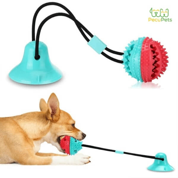 A Corgi pulling the Tug Ball stuck to the ground by the suction cup and a detailed image of the entire toy