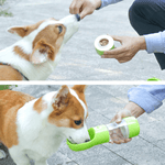A Corgi while drinking water and eating from the Portable dog bottle for water and food.