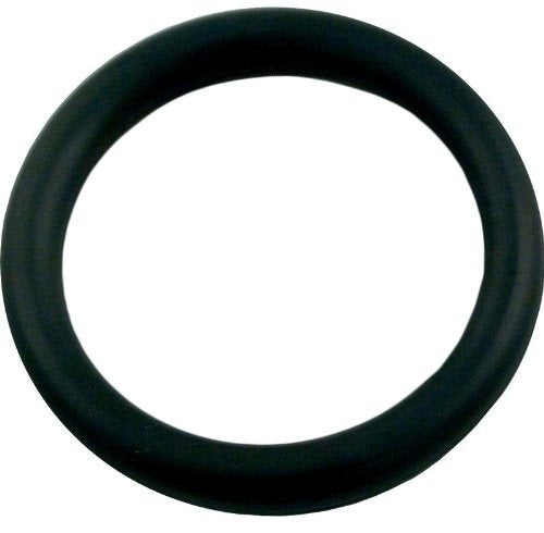 Polaris 65 O-Ring for Wall Fitting