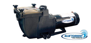 Blue Torrent inground pool pump
