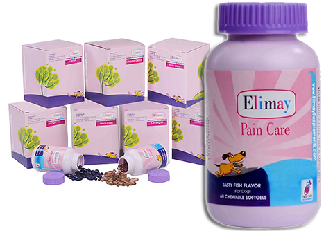 PAIN Care for Dog's - Instant Relief for your Dog's Discomfort