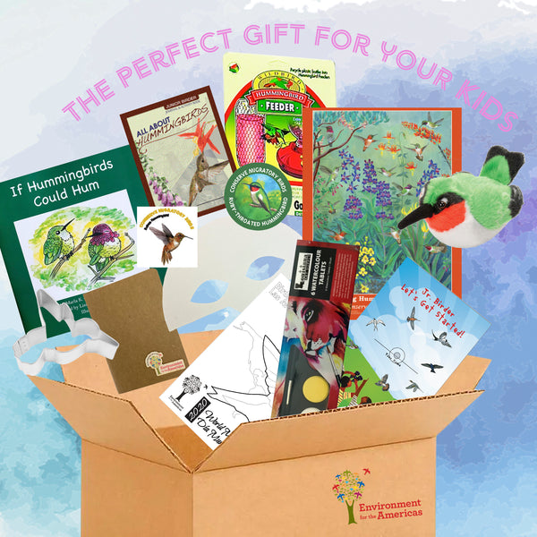 Junior Birder Kit : hummingbird Box