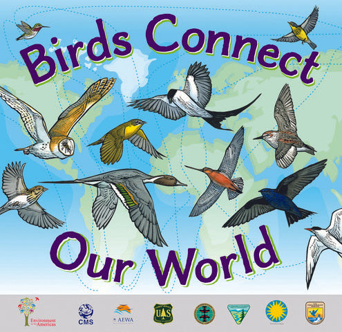 WMBD 2020 Birds Connect Our World Map