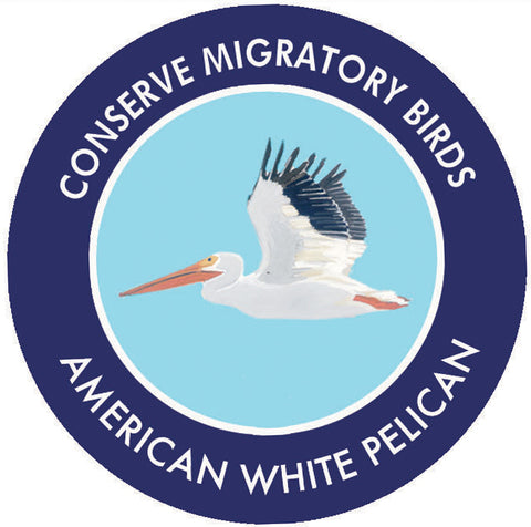American White Pelican sticker