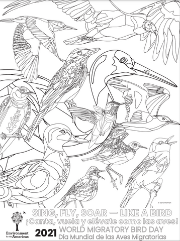 WMBD 2021 Coloring Page