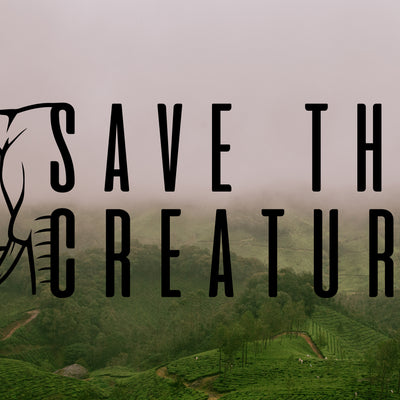 Save The Creatures