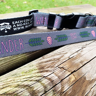 Wander & Co. Hoppy Pup Collar