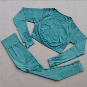 Ladies Long Sleeve Seamless Leggings Yoga Set. YS-083