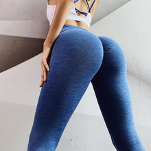 Load image into Gallery viewer, Women's Seamless Hip Tights Stretch Yoga Pants. YP-111