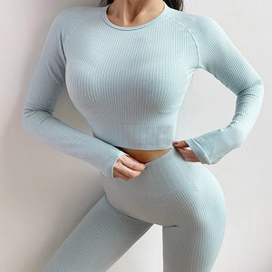 Ladies New Long Sleeve Tight Yoga Suit. YS-091
