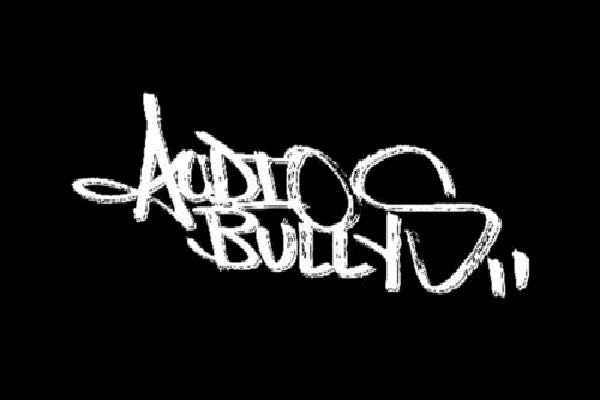 Audio Bullies Live Breaks DJ-Sets Compilation (2003 - 2010)
