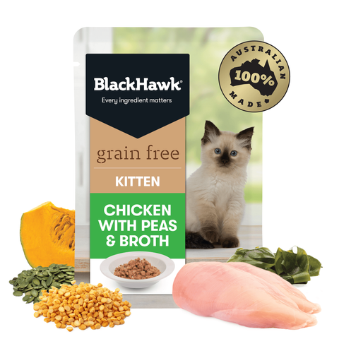 BlackHawk Grain Free Kitten Chicken 12 x 85g