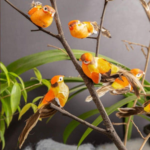 Falcon Bird Orange Set Of 4