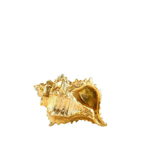 Kabuk Gold Shiny Shell Small
