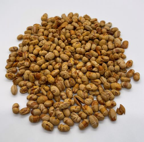 High Protein Organic Soynuts - UNSEASONED