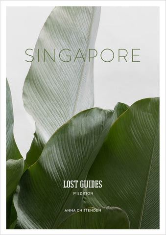 Lost Guides - Singapore