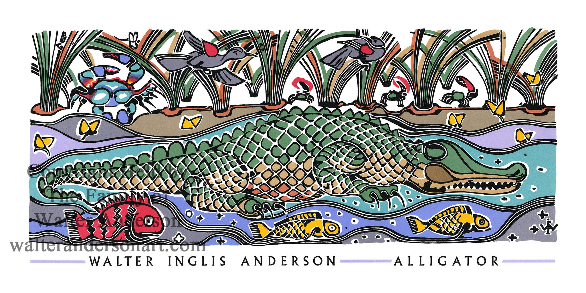 Alligator In Marsh Grass Realizations The Walter Anderson Shop